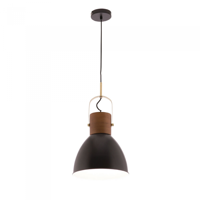 1 Light Metal & Timber Pendant